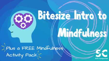 SATs Companion Mindfulness Banner & Pack